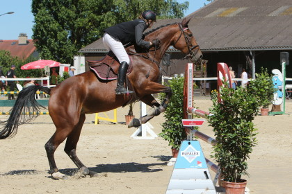 B100 - concours saut Severy - 17.07.2016