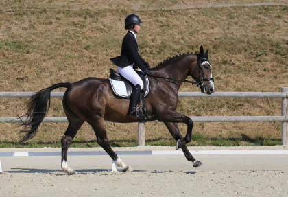 Dressage Alex et Alessia - Gingins - 27.08.2016