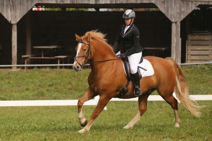 Amical dressage - Bioley-Magnoud - 16.10.2016