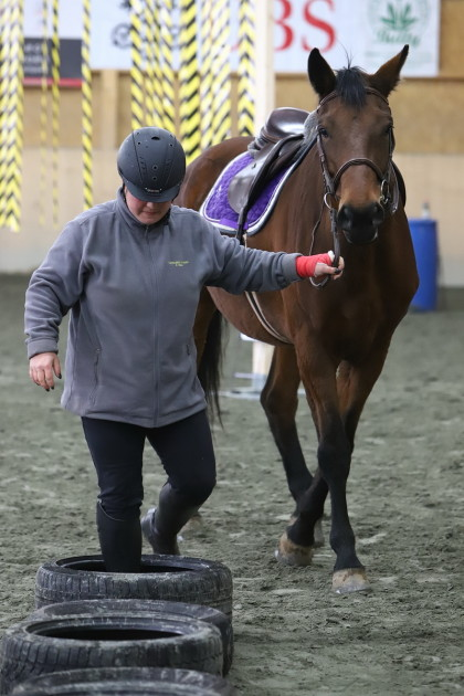 Gymkhana - Centre Equestre de Rue - 12.11.2017