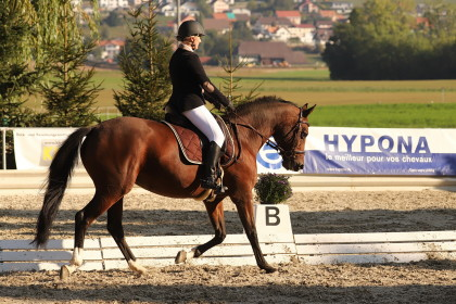 Dressage - Prez-vers-Nor�az - 08.09.2018