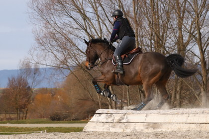 Cours cross - stage Thibaut Vallette - IENA - 03.03.2019
