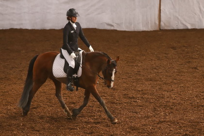 Dressage - Lully - 06.04.2019