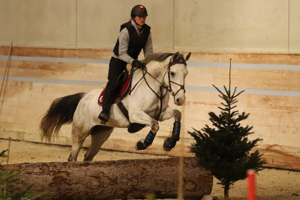 Stage Concours Complet Thibaut Vallette - IENA - 18.01.2020